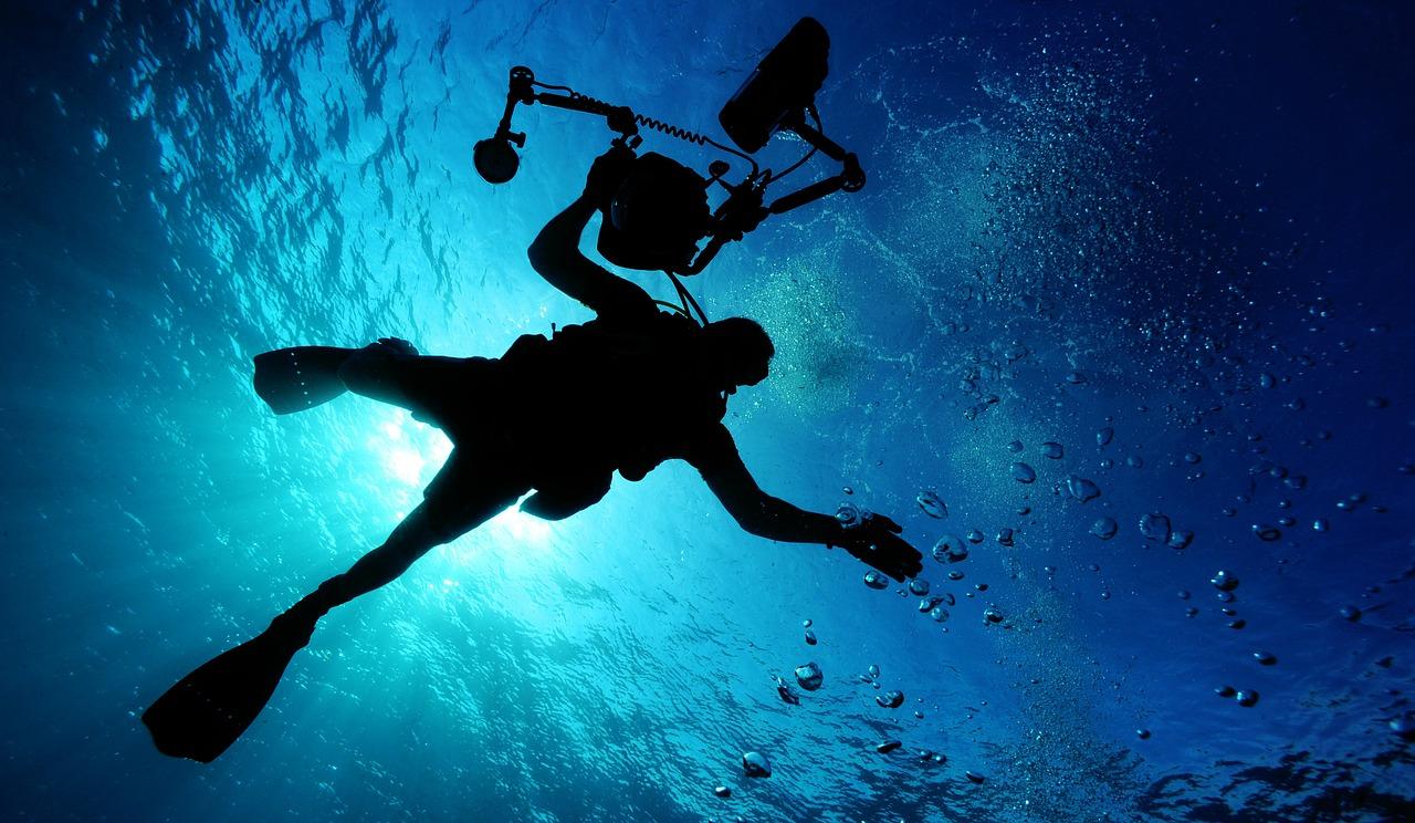 Les plus beaux sites de plongée du Brésil